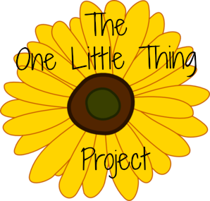The One Little  Thing Project